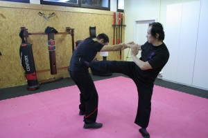 Wing Tsun Seminar 2